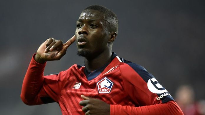 Nicolas Pepe shone for Lille this season