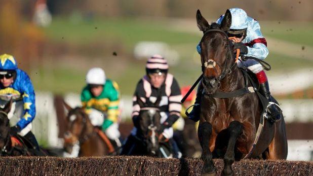 Lalor impresses on his chasing debut at Cheltenham