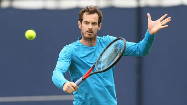 Andy Murray is a five-time singles champion at Queen's Club
