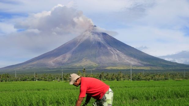 Farmers are still tending to their rice crops near the volcano