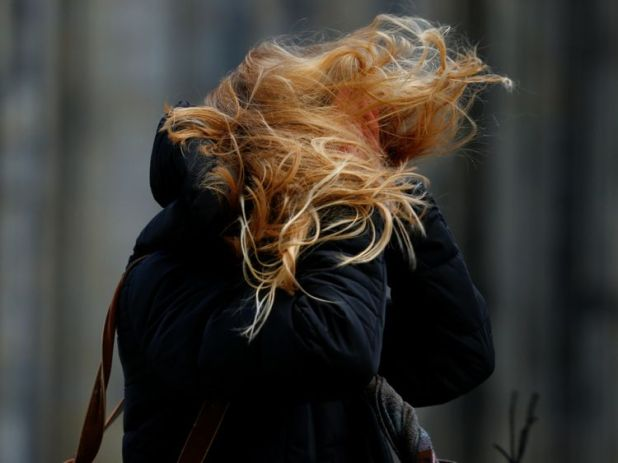 Cologne has experienced winds of up to 80mph