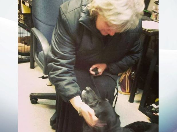 Abby and her owner Debra reunite after 10 years