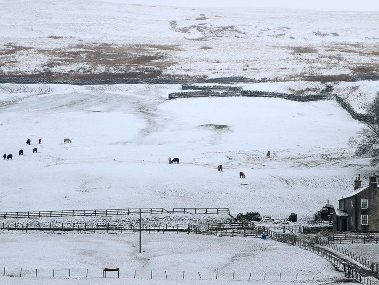 Snow covered fields close to Nenthead, Cumbria