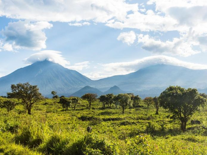 Virunga National Park, UNESCO World Heritage Site, Democratic Republic of the Congo Britons captured In DR Congo park 'lucky to be alive' Britons captured In DR Congo park 'lucky to be alive' skynews virunga national park 4306898