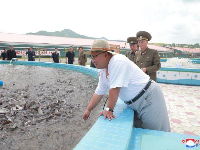Kim Jong Un visits a catfish plant  North Korean heatwave could have 'catastrophic effects', charities warn skynews kim jong un north korea 4385722