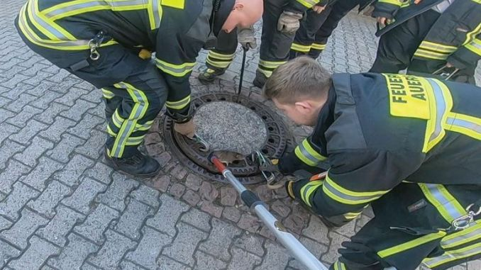 A team of firefighters helped rescue to the chunky rodent