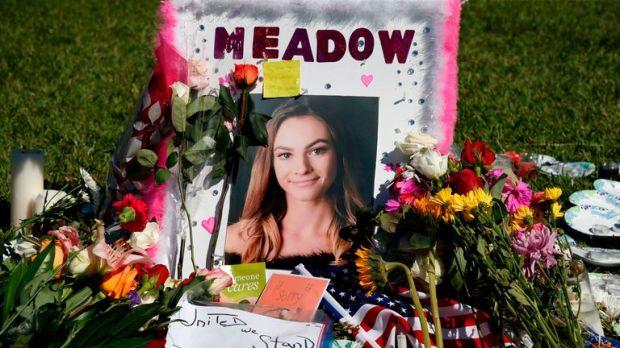 Meadow Pollack