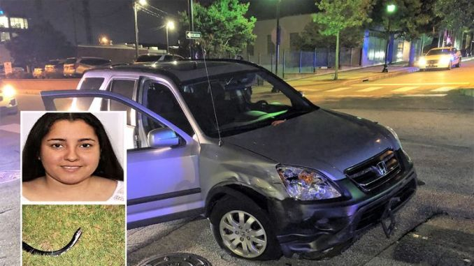 Hilmary Moreno-Berrios (inset top) allegedly stole an SUV (pictured) by throwing a live snake (inset bottom) at the driver. Pic: Greenville Police Department