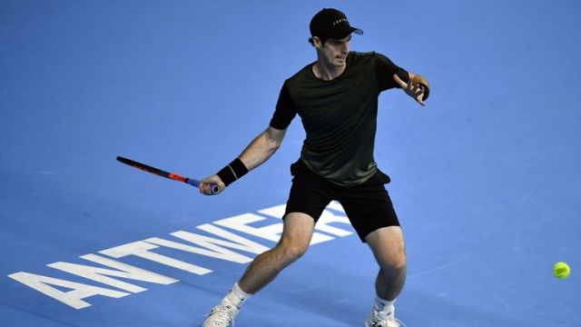 Andy Murray in action at Antwerp