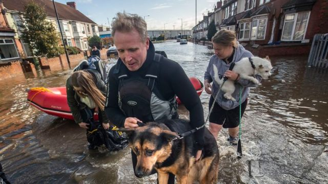 A dog is carried to safety in Doncaster