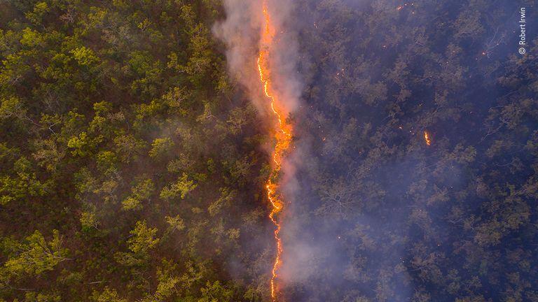 Buschfeuer von Robert Irwin, Australien