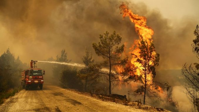 A firefighter extinguishes a forest fire near the town of Manavgat