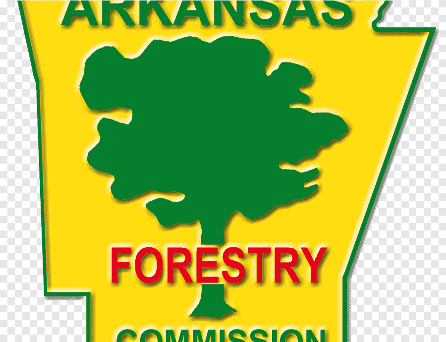 The forestry commission has opened expressions of interest to pilot a new scheme to protect trees from pests and diseases in england. Arkansas Forestry Commission Sustainable Forest Management Alabama Forestry Commission Forest Leaf Text Png Pngegg