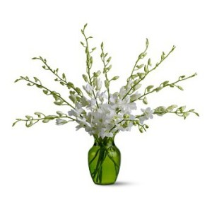 Bahrain Winter Fresh   Flower Delivery   White Orchids   FLOWER     Bahrain flowers   Winter Fresh Flower Bouquet Arrangement