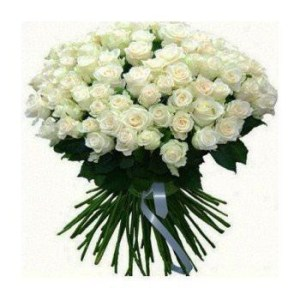 Kuala Lumpur Snow White   Flower Delivery   100 White Roses     Kuala Lumpur flowers   Snow White Flower Bouquet Arrangement