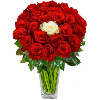 Tenerife You and Me   Flower Delivery   Red Roses and 1 White     100 Red Roses  EUR 190 00  Tenerife online Florist   You and Me Bouquet