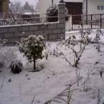 Nevou e muito...