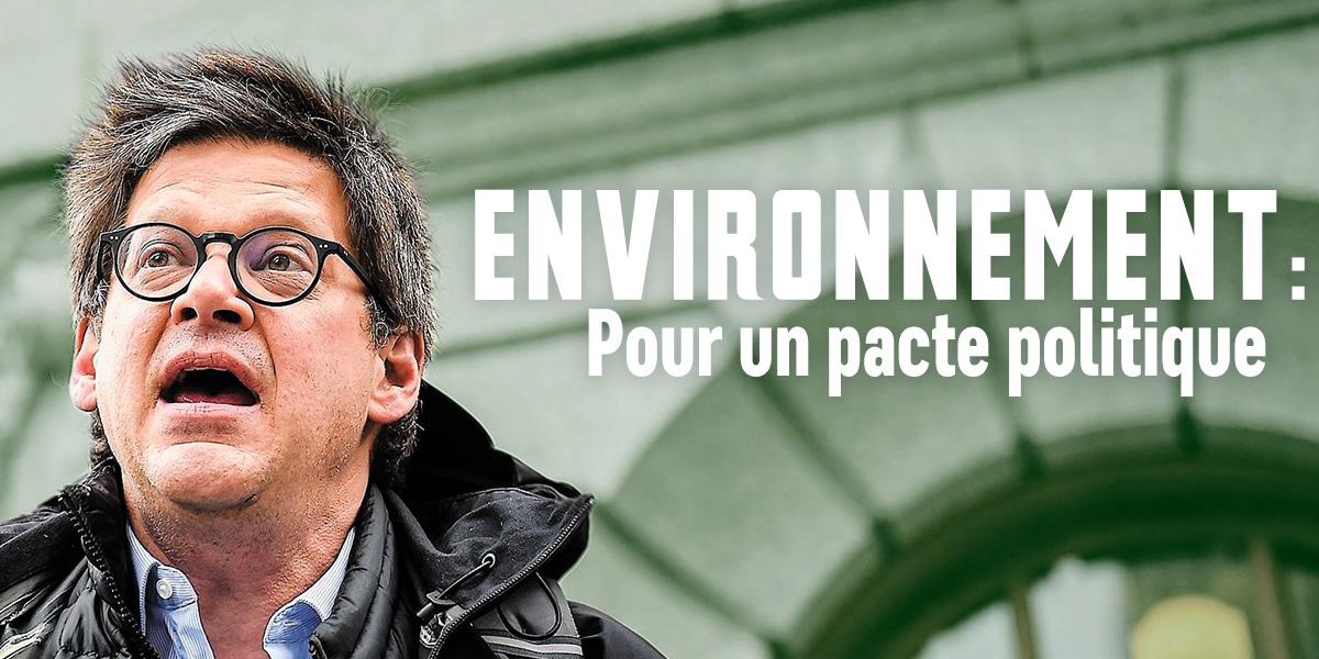 Pacte-environnement-Image-par-Adam-Margineanu-Plante