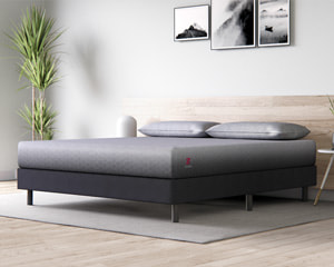 zoma sports mattress