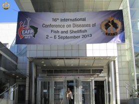 Welcome to the 16th EAFP conference