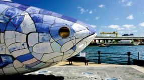 ft5s-belfast-fish-antrim-tourism-ireland