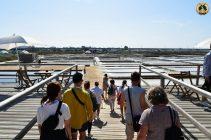 Post-conference study tour at Salinas de Aveiro