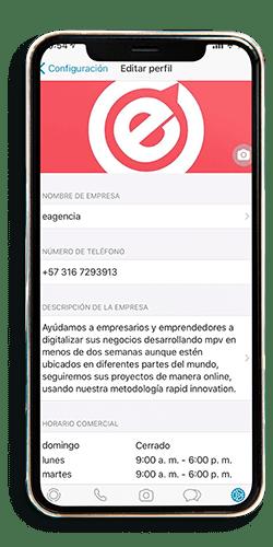 whatsapp1 (1)