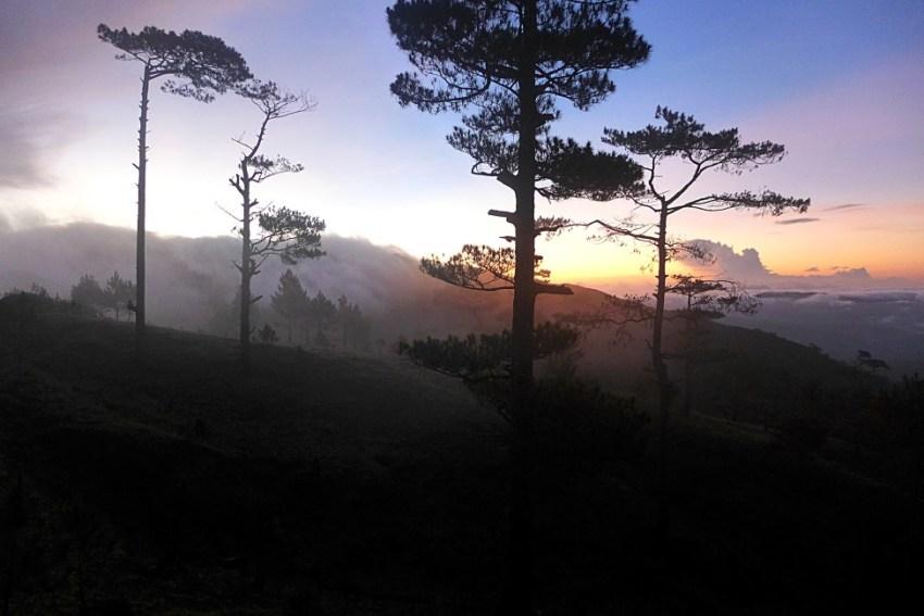 Mt. Ugo, Benguet, Philippines