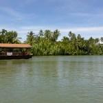 Bohol: Loboc River Cruise