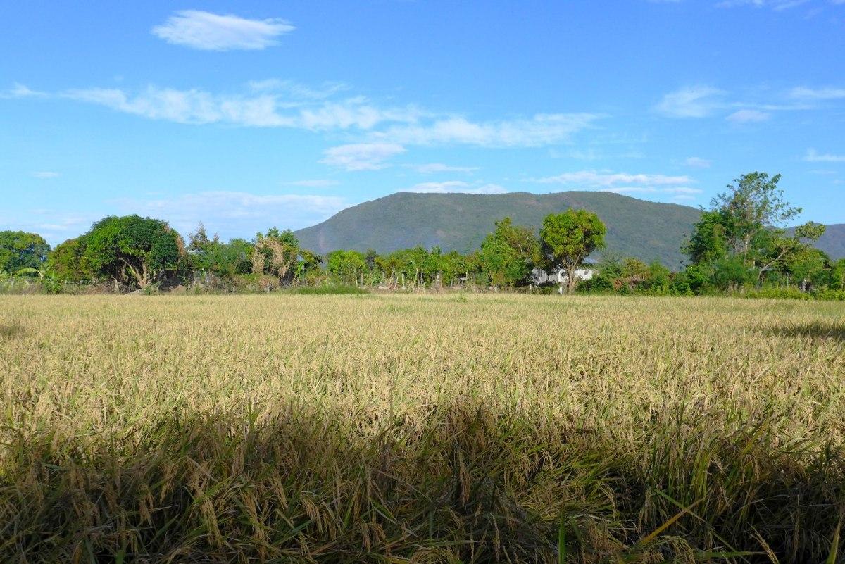 Life in Narvacan, Ilocos Sur