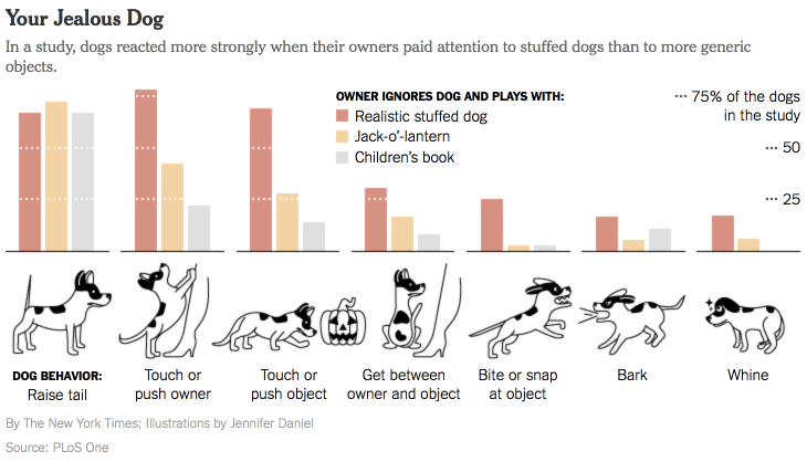 NYTimes, Your Jealous Dog