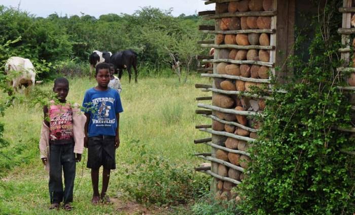 Children of Massingir, Mozambique
