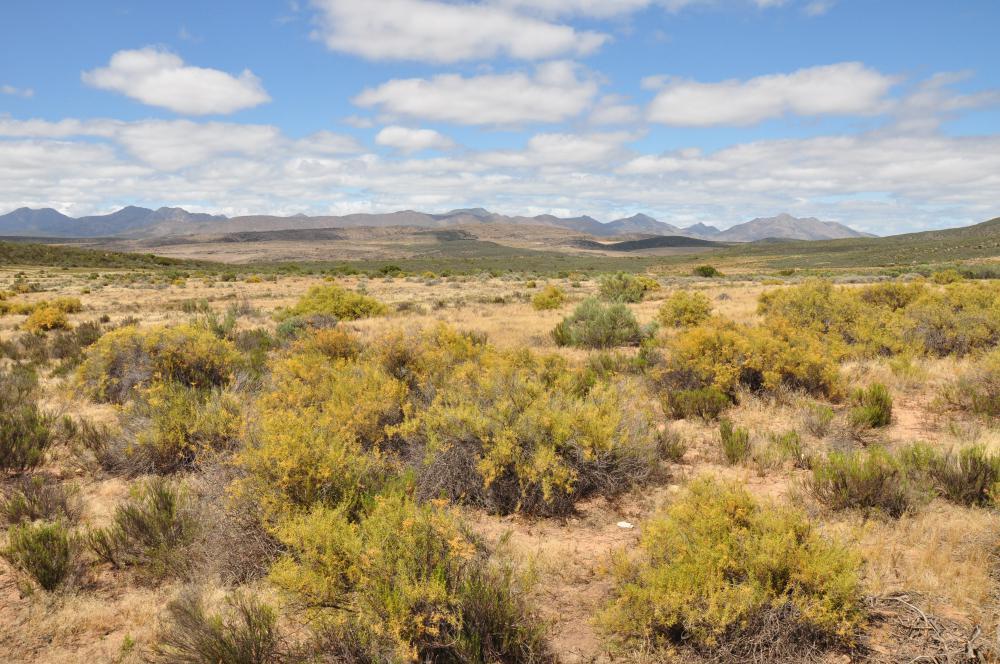 Gamkaberg: Big Sky, Klein Karoo Country