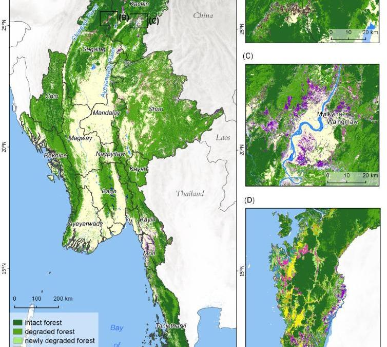 MSc on deforestation in Myanmar and its drivers