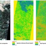MSc opportunities: remote sensing in ecology and conservation