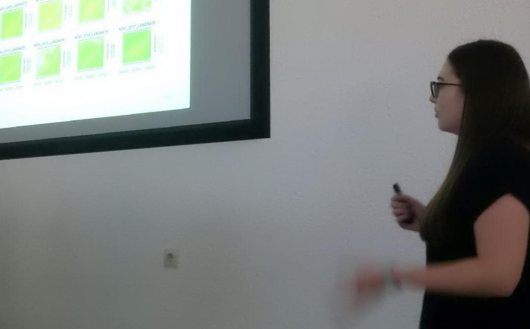 Final presentations of the remote sensing programming course