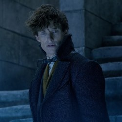 Fantastic Beasts: Crimes of Grindelwald Leaves Fans Old and New in Awe