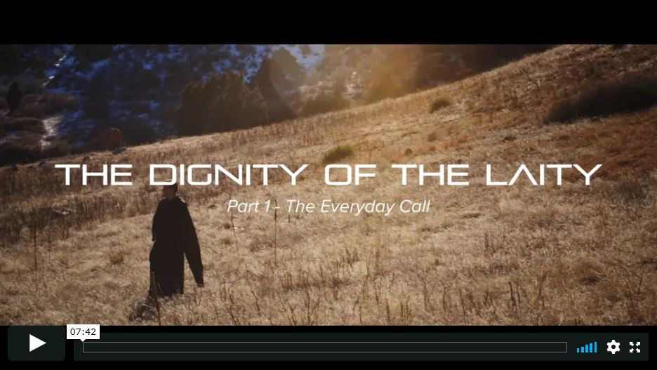 The Dignity of the Laity (12-part series, 82 minutes)