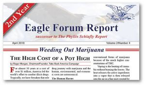 Eagle Forum Report