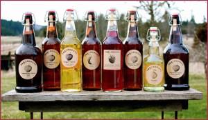 Eaglemount Ciders