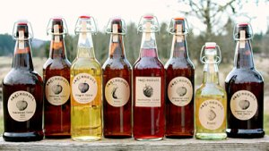 Our full line of ciders