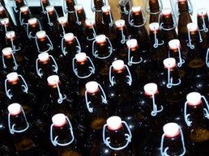 Cider bottles, just filled