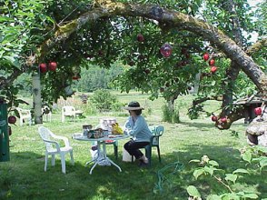 Trudy relaxing in the orchard