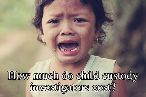How much do child custody investigators cost
