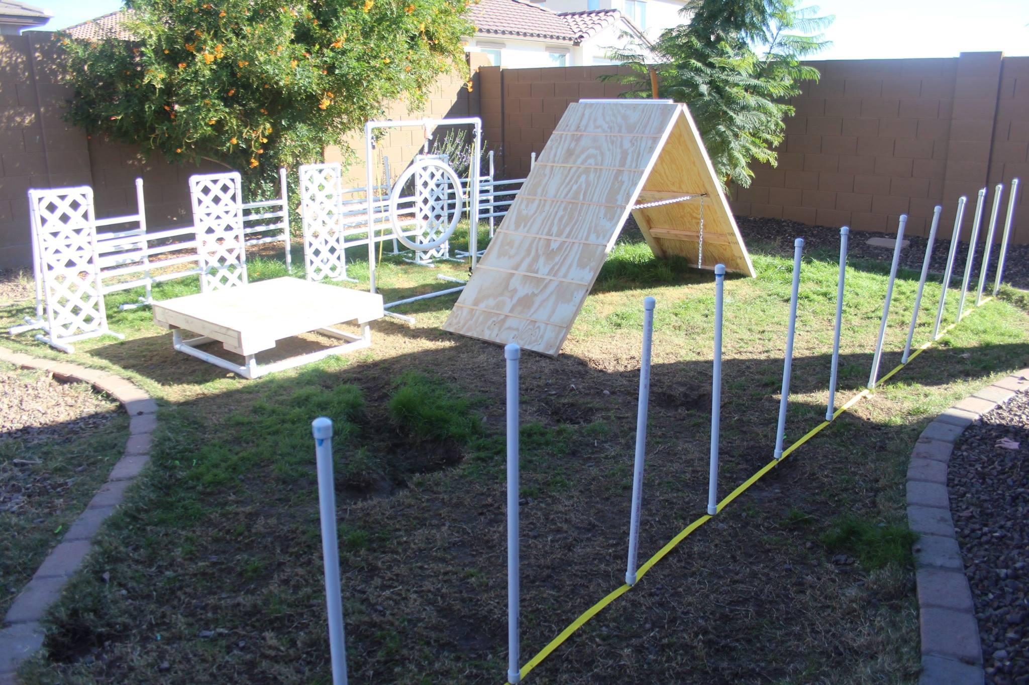Built Dog Agility Course For Veteranu0027s Organization