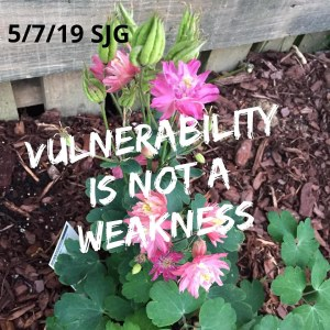 2019-05-07 Vulnerability is not a weakness