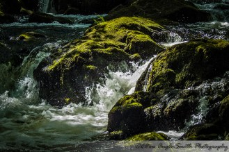 Image of green, mossy rocks with water flowing through
