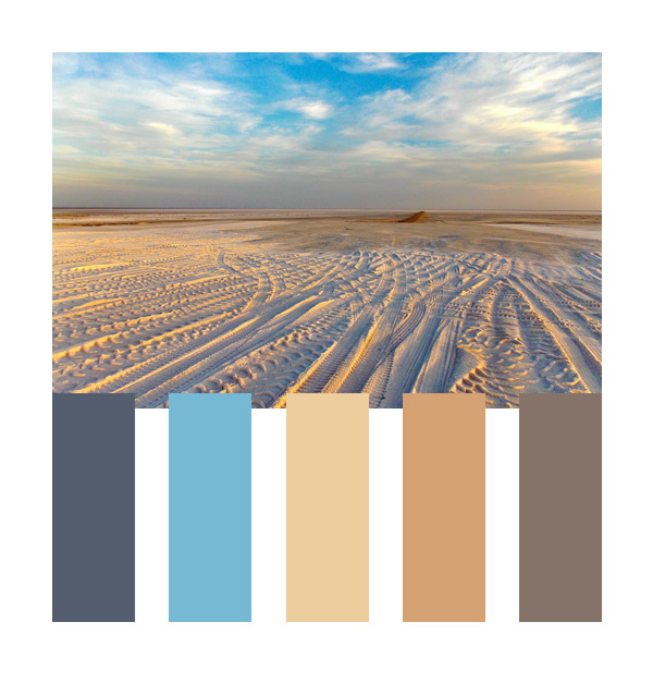 desert color palette