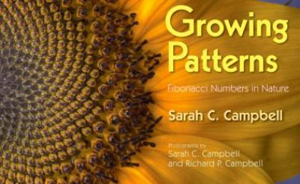 growing-patterns