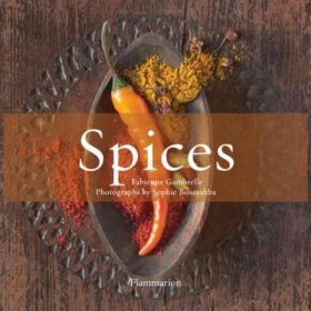 The Flavor of Spices by Fabienne Gambrelle